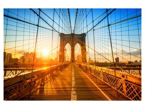 Brooklyn Motiv