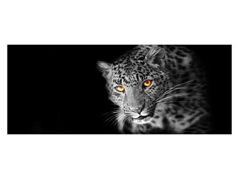 Leopard Panorama